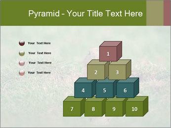 0000094649 PowerPoint Templates - Slide 31