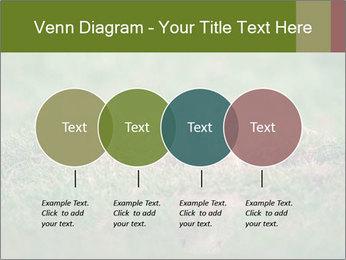 0000094649 PowerPoint Templates - Slide 32