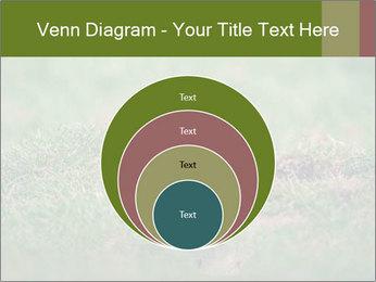 0000094649 PowerPoint Templates - Slide 34