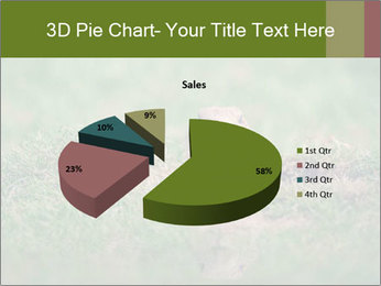 0000094649 PowerPoint Templates - Slide 35