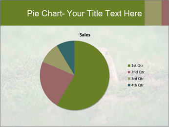 0000094649 PowerPoint Templates - Slide 36