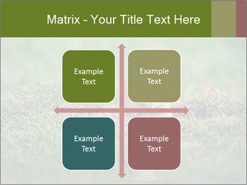 0000094649 PowerPoint Templates - Slide 37
