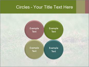 0000094649 PowerPoint Templates - Slide 38