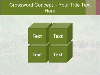 0000094649 PowerPoint Templates - Slide 39