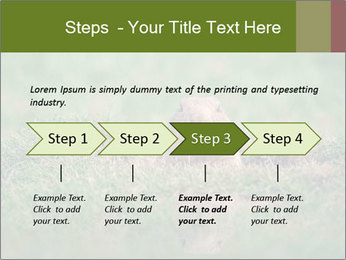 0000094649 PowerPoint Templates - Slide 4