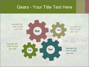 0000094649 PowerPoint Templates - Slide 47