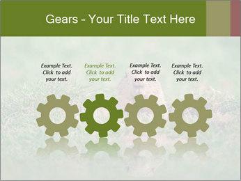 0000094649 PowerPoint Templates - Slide 48