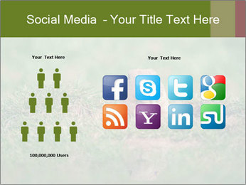 0000094649 PowerPoint Templates - Slide 5