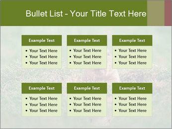 0000094649 PowerPoint Templates - Slide 56