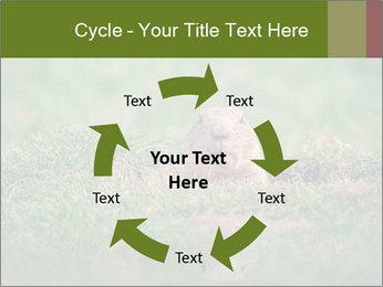 0000094649 PowerPoint Templates - Slide 62