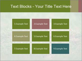 0000094649 PowerPoint Templates - Slide 68