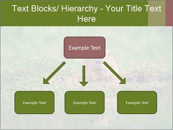 0000094649 PowerPoint Templates - Slide 69