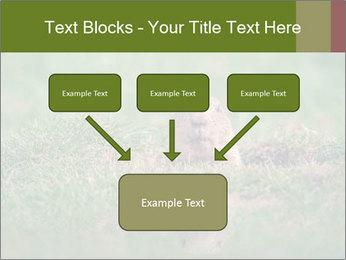 0000094649 PowerPoint Templates - Slide 70