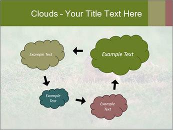 0000094649 PowerPoint Templates - Slide 72