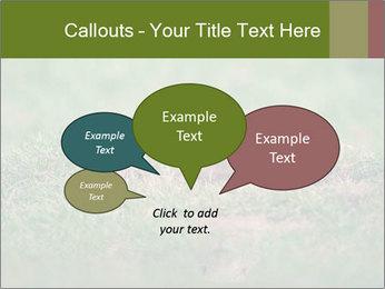0000094649 PowerPoint Templates - Slide 73