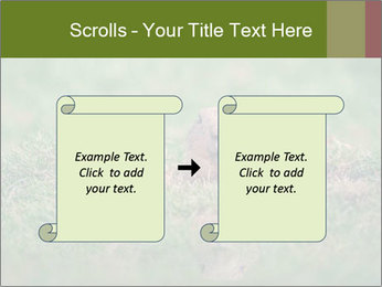 0000094649 PowerPoint Templates - Slide 74