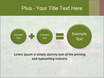 0000094649 PowerPoint Templates - Slide 75
