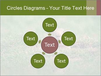0000094649 PowerPoint Templates - Slide 78