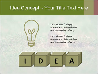 0000094649 PowerPoint Templates - Slide 80