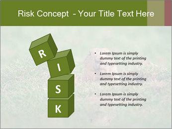 0000094649 PowerPoint Templates - Slide 81