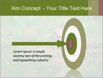 0000094649 PowerPoint Templates - Slide 83