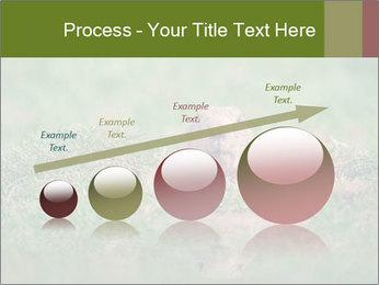 0000094649 PowerPoint Templates - Slide 87