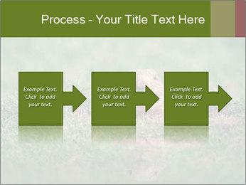 0000094649 PowerPoint Templates - Slide 88