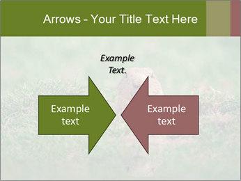 0000094649 PowerPoint Templates - Slide 90