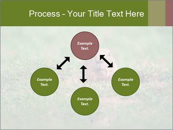 0000094649 PowerPoint Templates - Slide 91