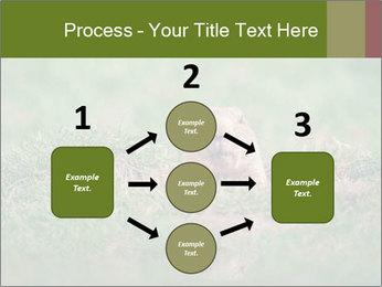 0000094649 PowerPoint Templates - Slide 92