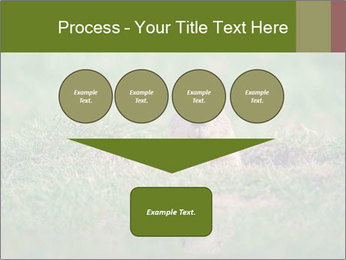 0000094649 PowerPoint Templates - Slide 93