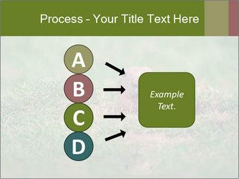 0000094649 PowerPoint Templates - Slide 94