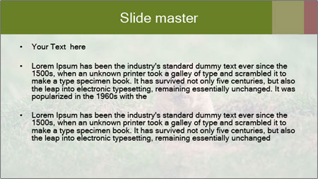 0000094649 PowerPoint Template - Slide 2