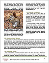 0000094649 Word Template - Page 4