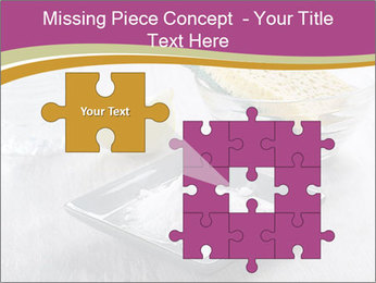 0000094651 PowerPoint Templates - Slide 45