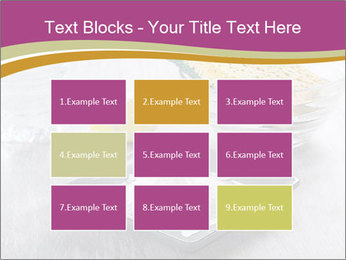 0000094651 PowerPoint Templates - Slide 68