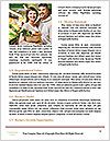 0000094652 Word Templates - Page 4