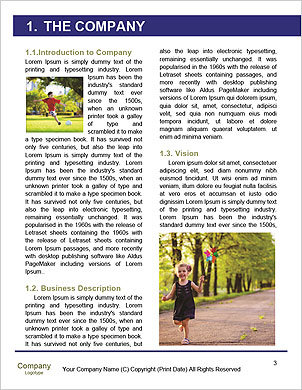 0000094656 Word Template - Page 3