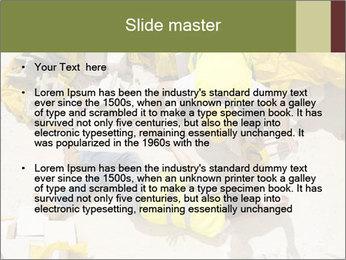 0000094668 PowerPoint Templates - Slide 2