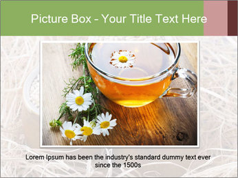 0000094670 PowerPoint Template - Slide 15