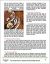 0000094670 Word Templates - Page 4