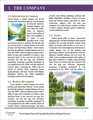 0000094677 Word Template - Page 3
