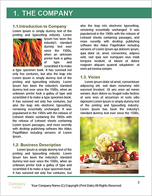 0000094678 Word Template - Page 3