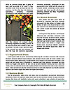 0000094678 Word Template - Page 4