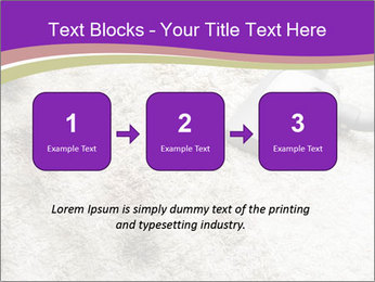 Dirty carpet PowerPoint Templates - Slide 71