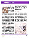 0000094687 Word Template - Page 3