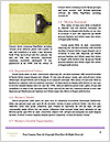 0000094687 Word Template - Page 4