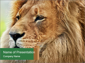 Lion savanna PowerPoint Templates - Slide 1
