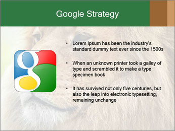 Lion savanna PowerPoint Templates - Slide 10