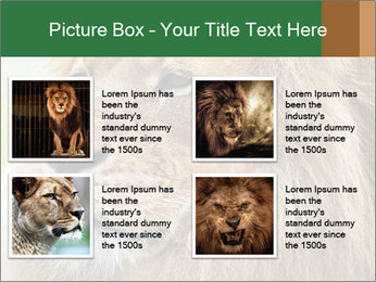 Lion savanna PowerPoint Templates - Slide 14